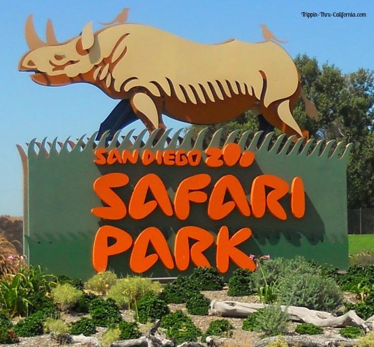 Permalink to San Diego Wild Animal Park Prices