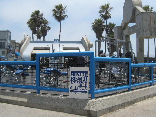 Muscle Beach Venice California
