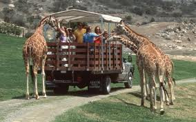 San Diego Safari Park..
