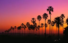 Venice Beach Sunset..