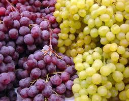 Wine Grapes...