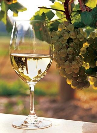Chardonnay...